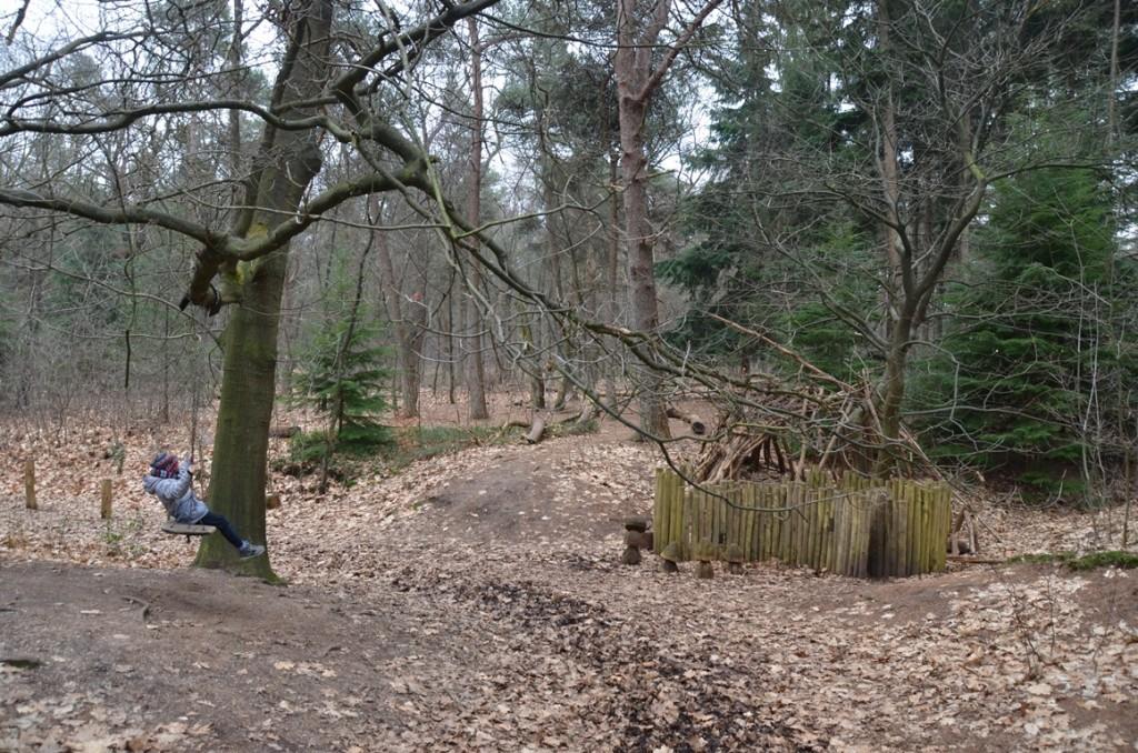 Het Bos van Daantje Das bij Natuurdiorama Holterberg