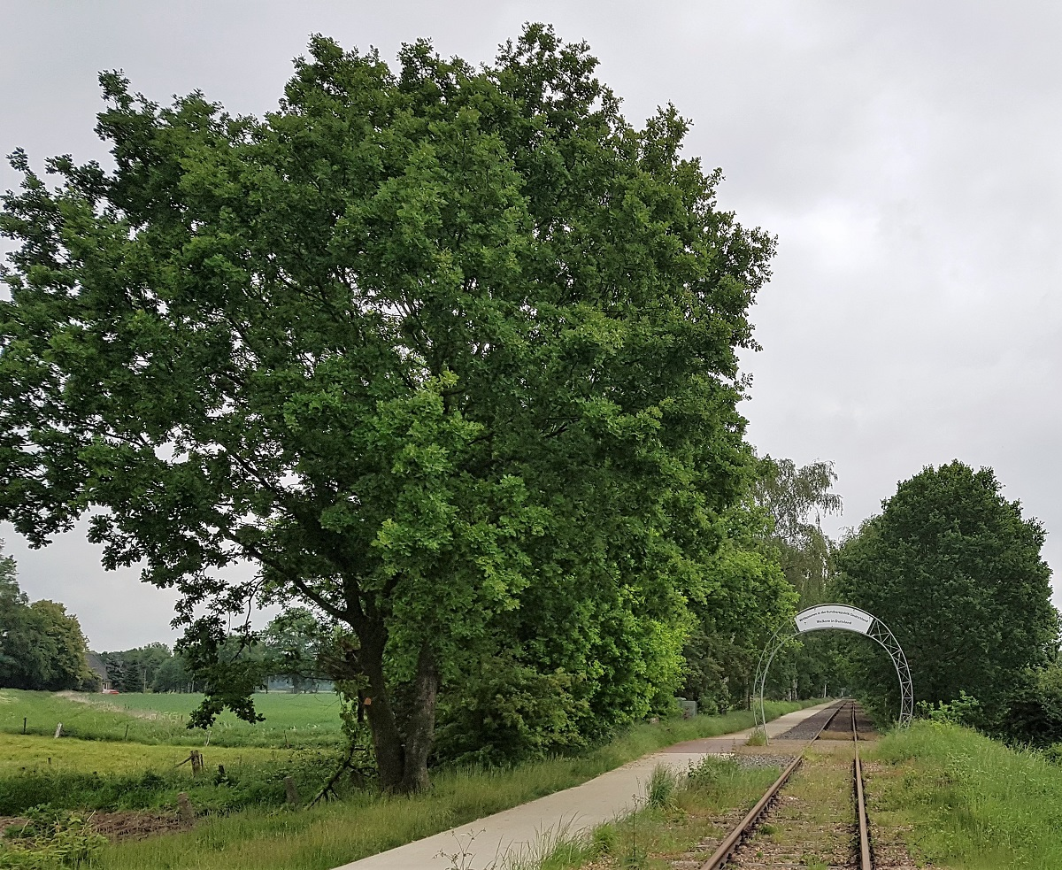 Railfiets Groesbeek Kranenburg