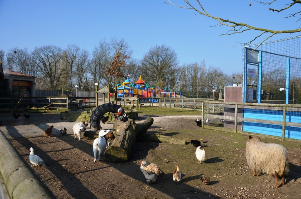 Kinderboerderij van Resort Arcen in Noord Limburg