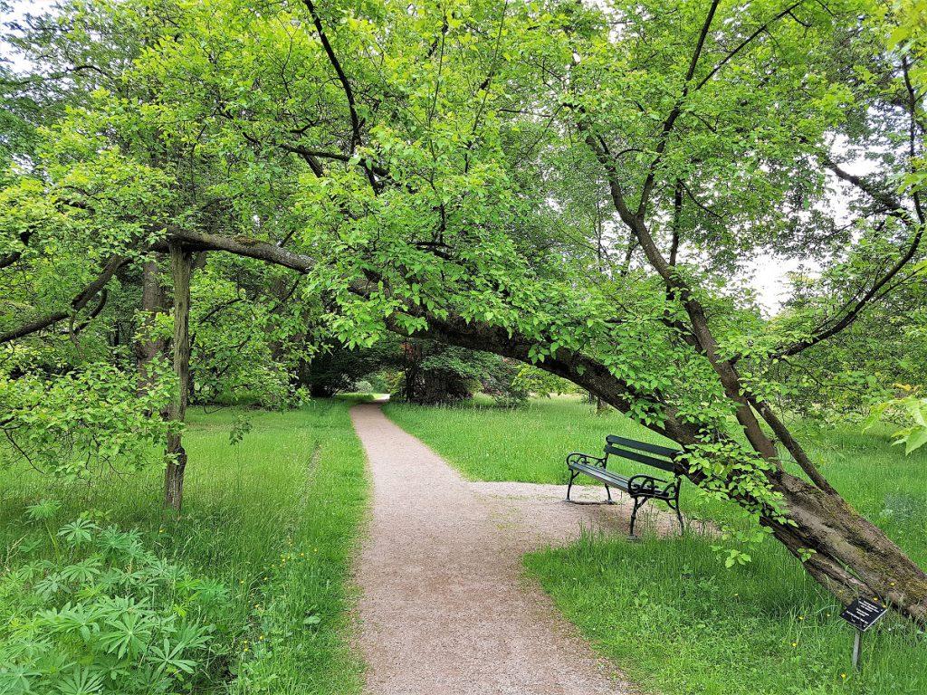 wandelen twente arboretum poort bulten
